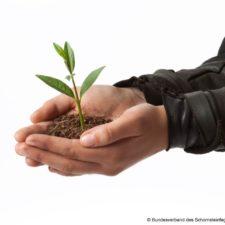 Schornsteinfeger Umwelt